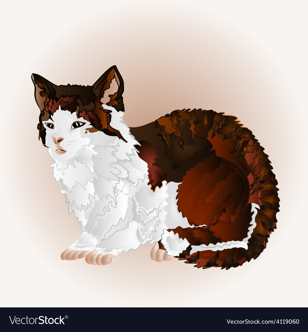 Kitty three color sitting pussy feline vector | Price: 1 Credit (USD $1)