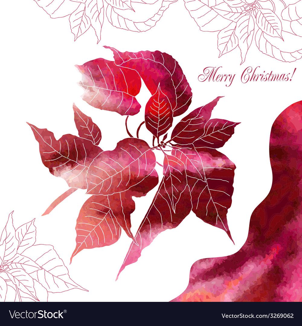 Background with red poinsettia flowers vector | Price: 1 Credit (USD $1)