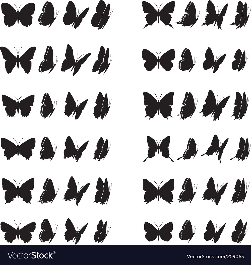 Butterfly collection vector | Price: 1 Credit (USD $1)