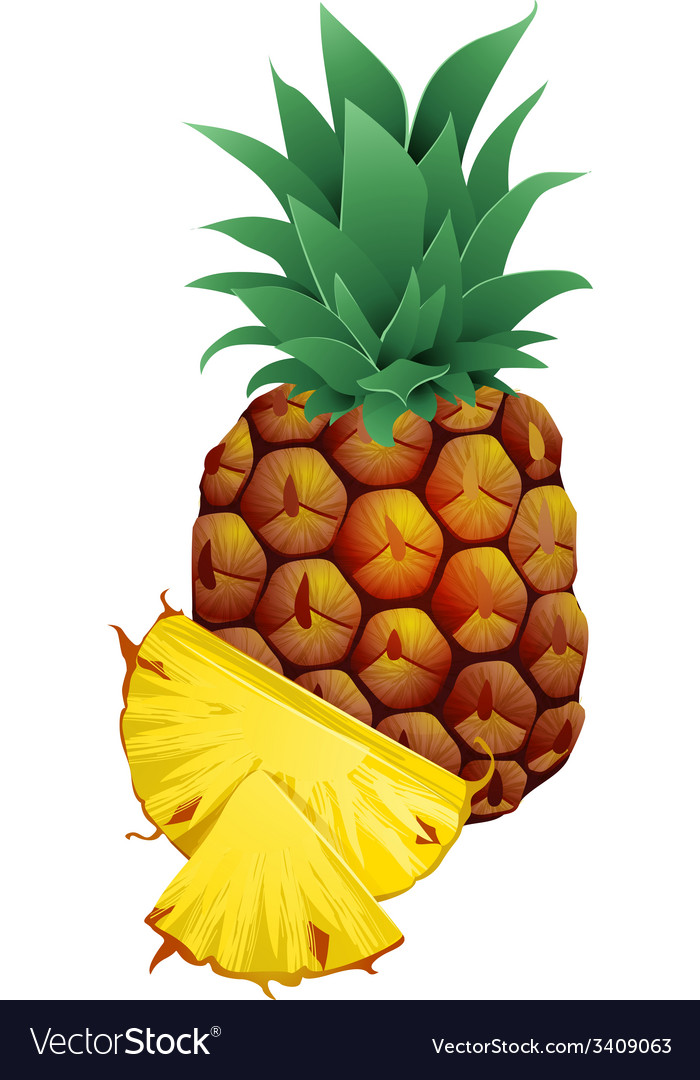 Pineapple with slices isolated on white vector | Price: 1 Credit (USD $1)