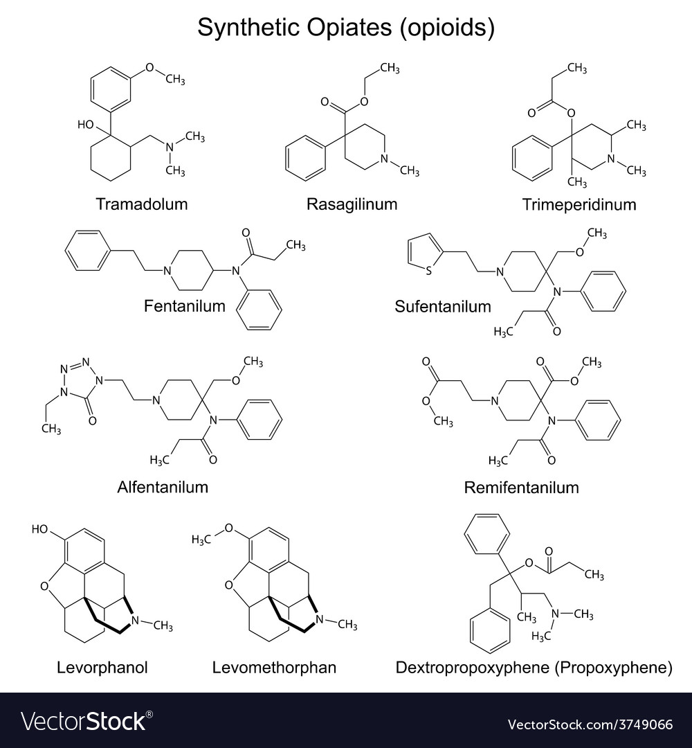 Chemical formulas of main full synthetic opiates vector | Price: 1 Credit (USD $1)