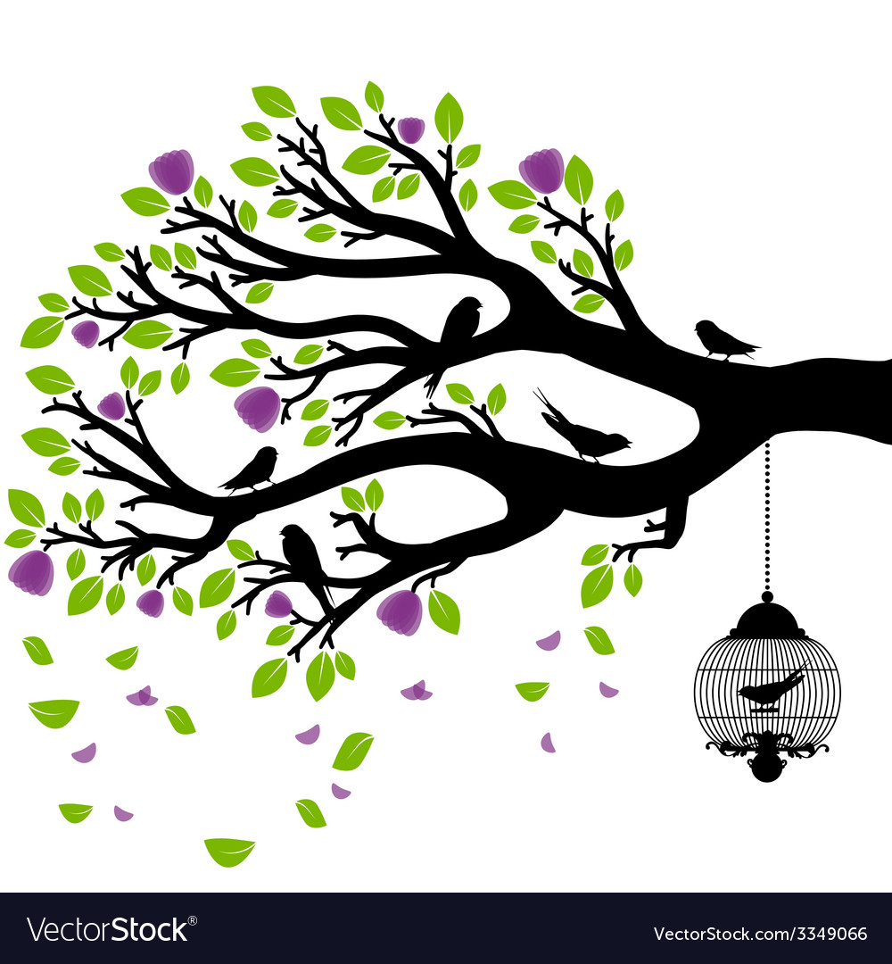 Drawing of the tree with cages vector | Price: 1 Credit (USD $1)