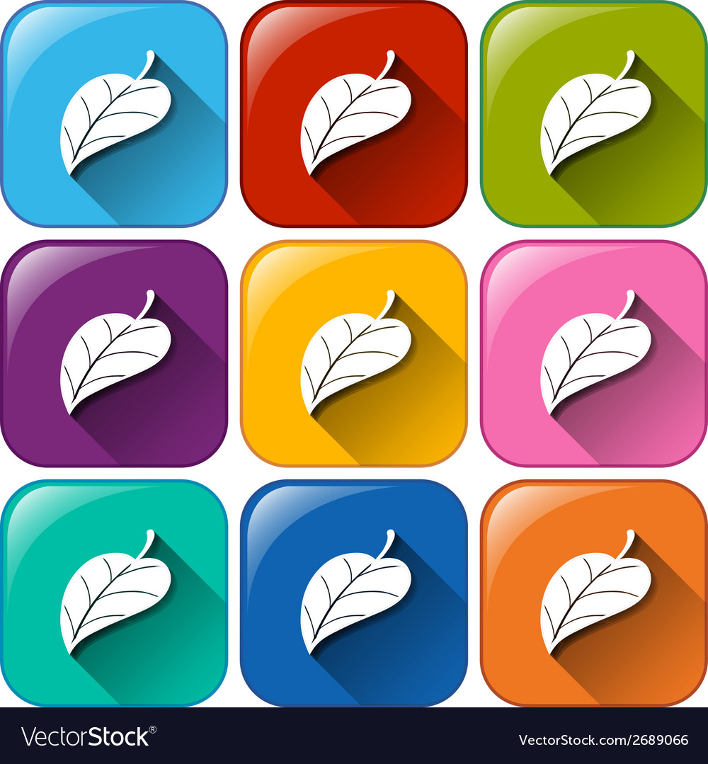 Leaf icons vector | Price: 1 Credit (USD $1)