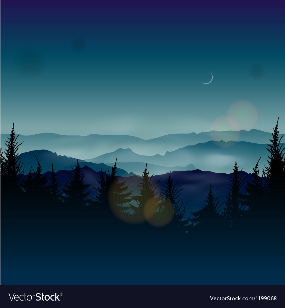 Misty coniferous forests vector