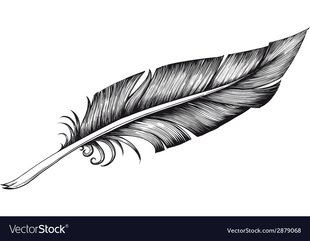 Quill pen vector | Price: 1 Credit (USD $1)