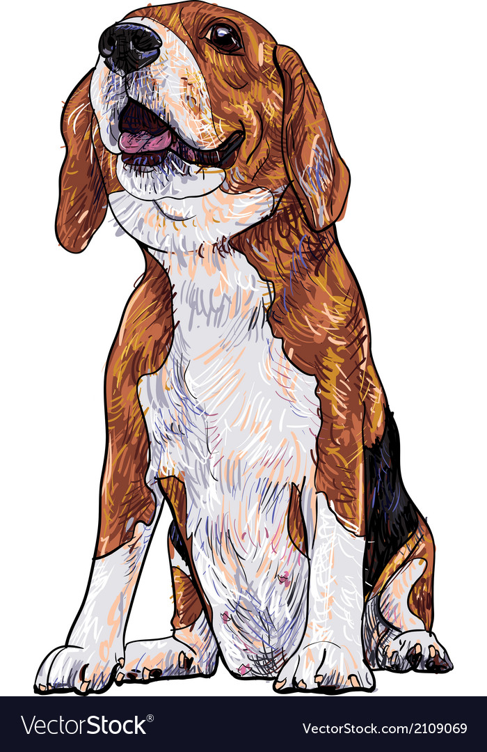 Beagle vector | Price: 1 Credit (USD $1)