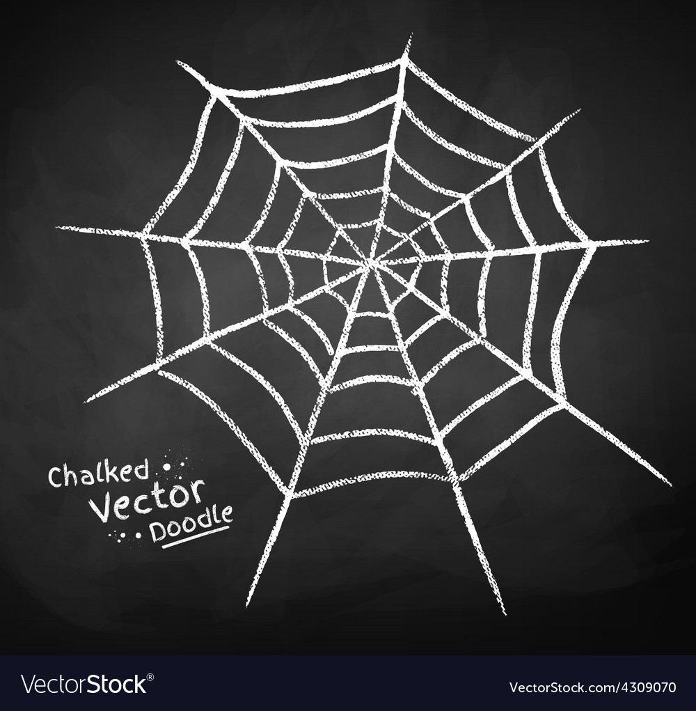 Chalkboard drawing of spider web vector | Price: 1 Credit (USD $1)