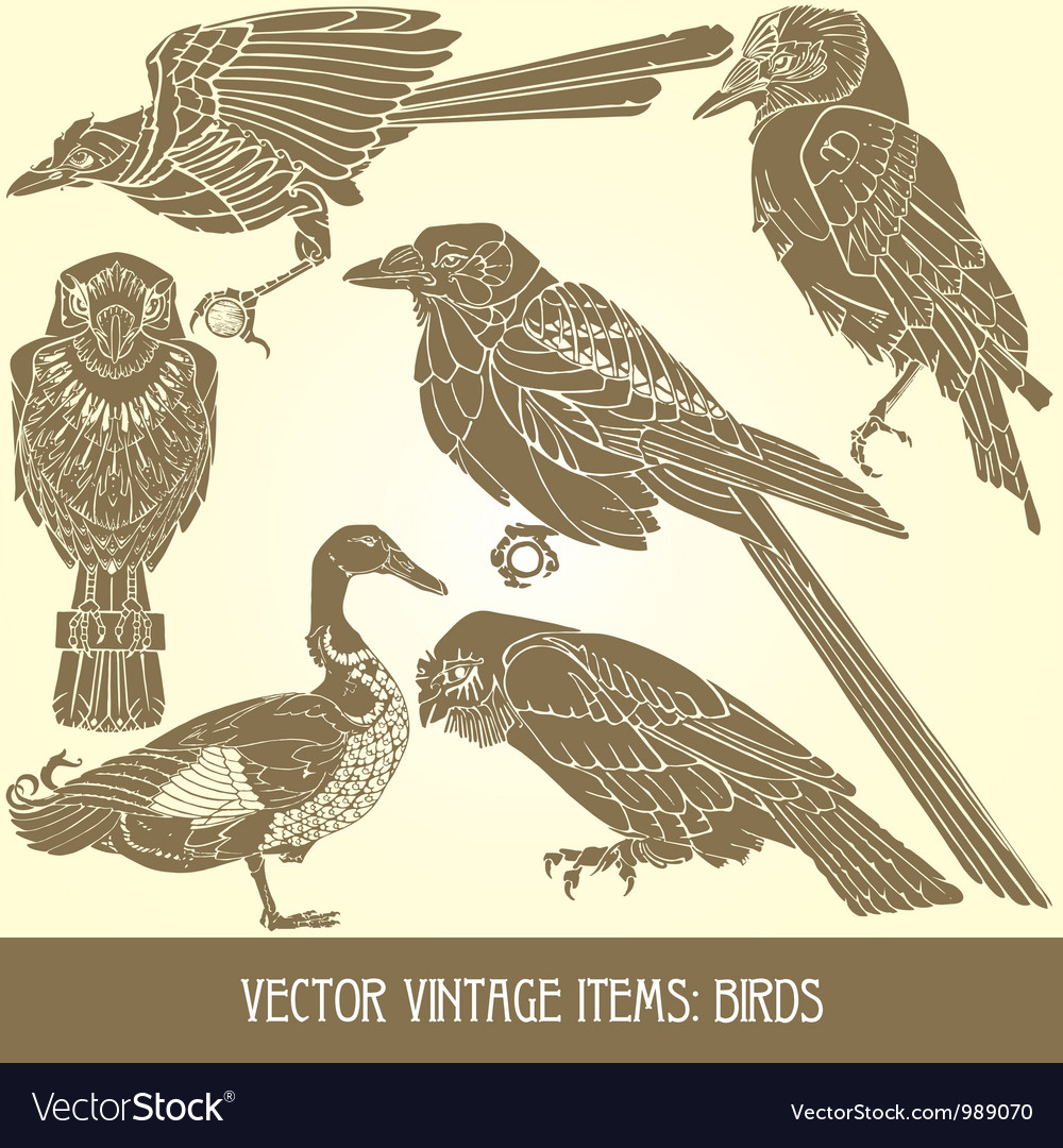 Variety of vintage bird vector | Price: 1 Credit (USD $1)