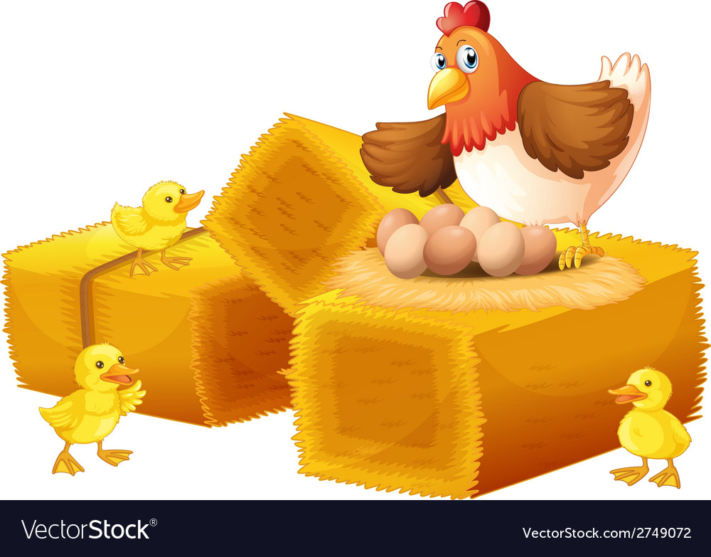 A hen with her eggs and chicks vector