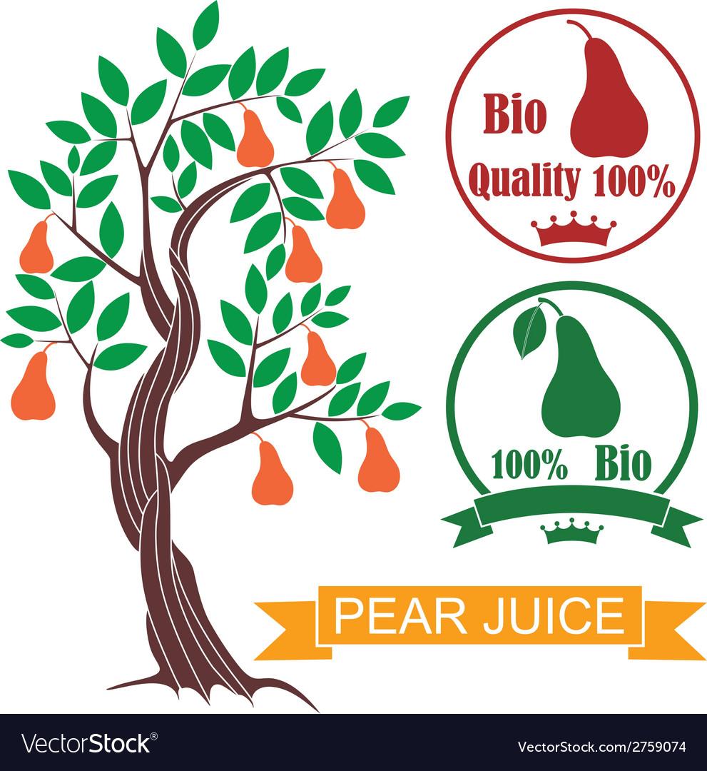 Pear vector   Price: 1 Credit (USD $1)