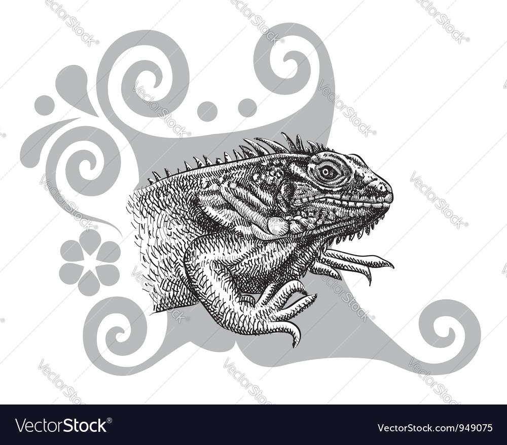 Iguana drawing vector | Price: 1 Credit (USD $1)