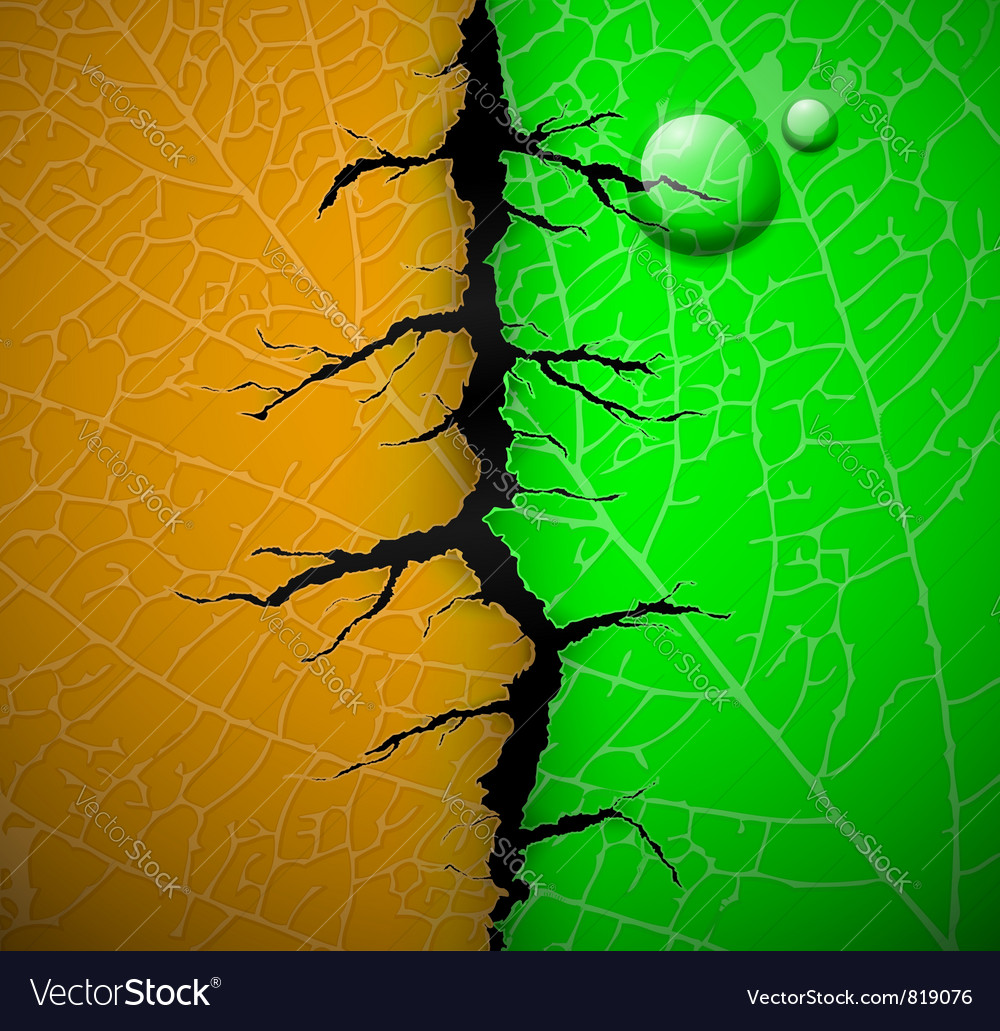 Leaf with crack vector | Price: 1 Credit (USD $1)