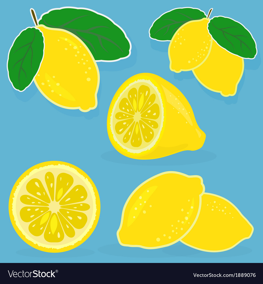 Set of lemon on blue background vector | Price: 1 Credit (USD $1)