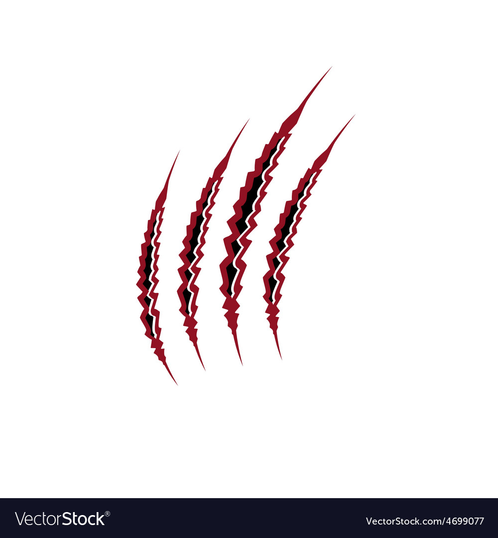 Claws marks vector | Price: 1 Credit (USD $1)