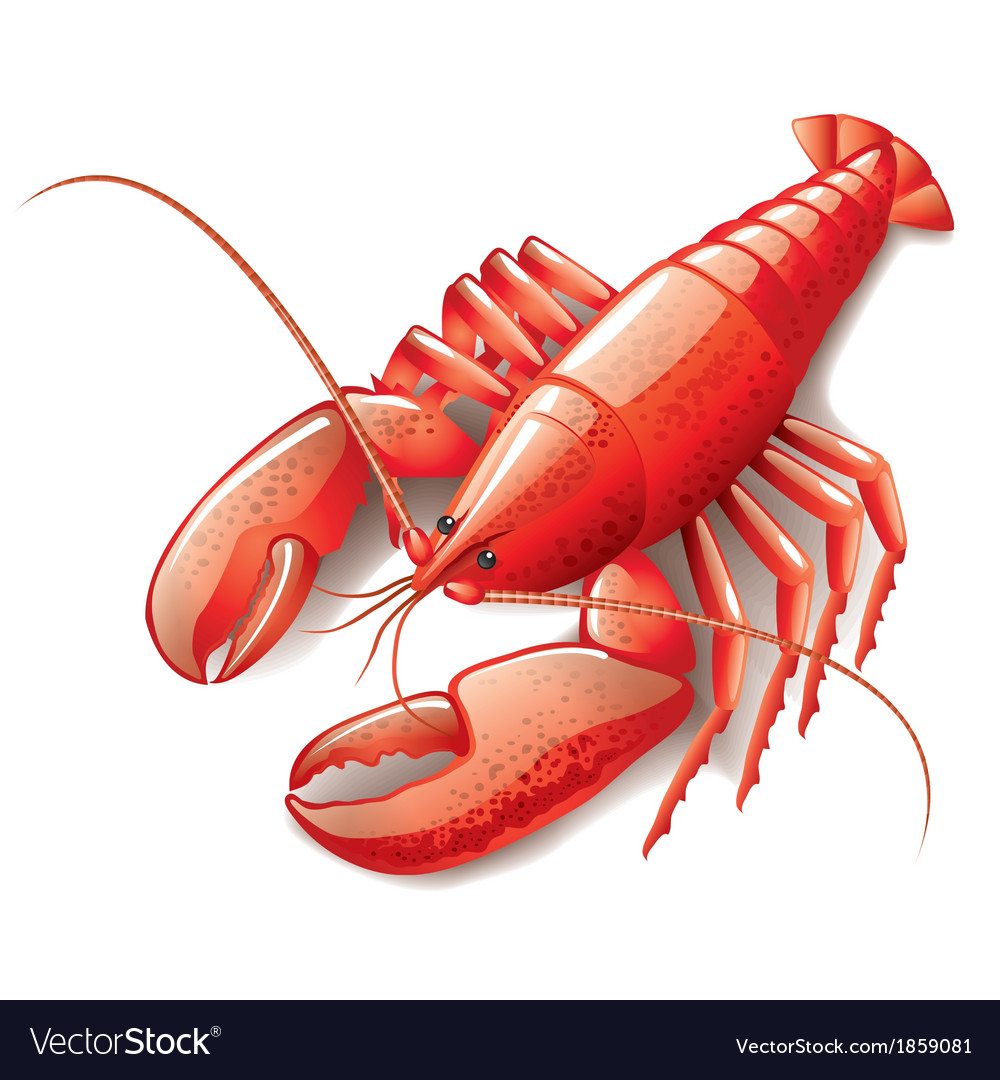 Object lobster vector | Price: 1 Credit (USD $1)