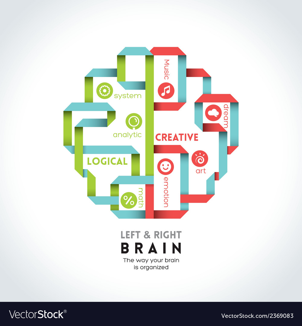Left and right brain function vector | Price: 1 Credit (USD $1)