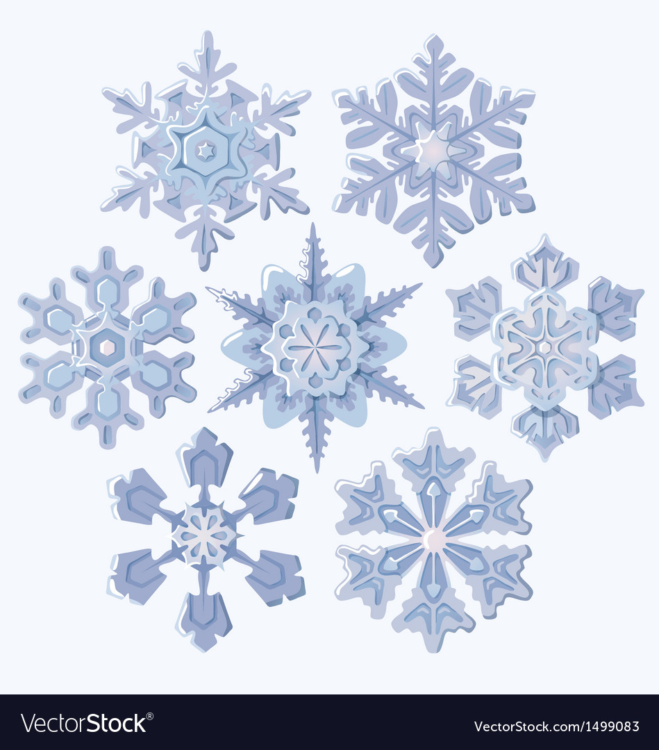 Set of ornate three dimensional snowflakes icons vector | Price: 3 Credit (USD $3)