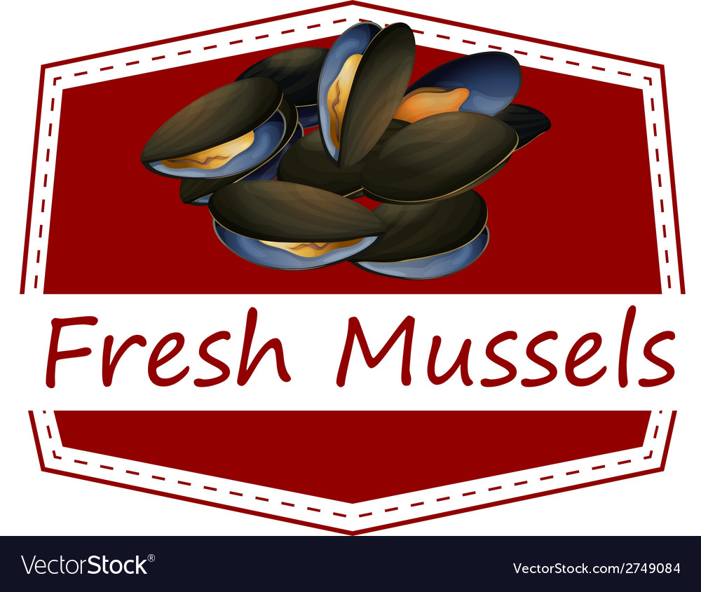 Fresh mussels vector | Price: 1 Credit (USD $1)