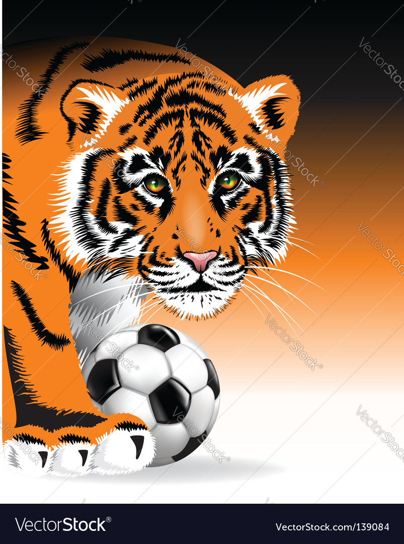 Tiger with soccer ball vector | Price: 1 Credit (USD $1)