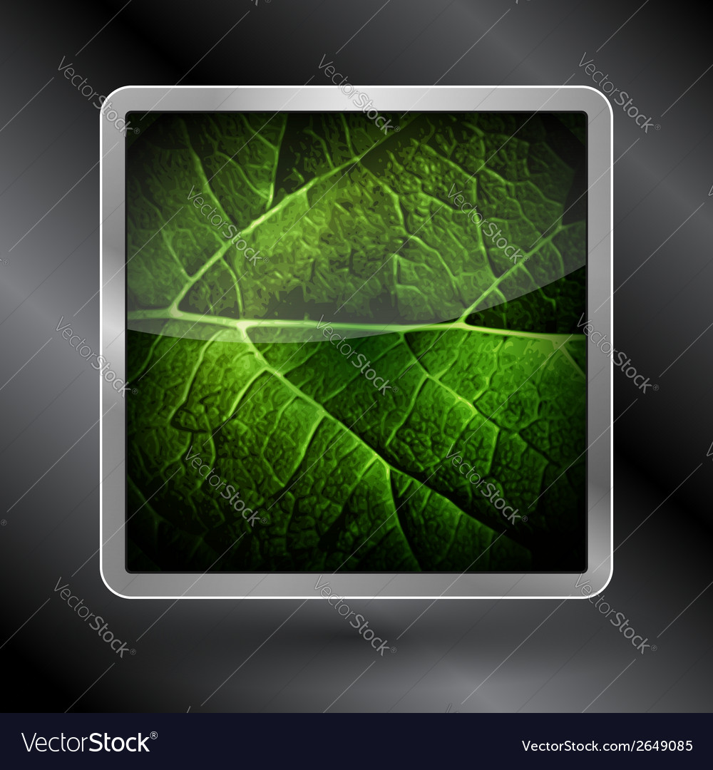 Icon leaf of the tree vector   Price: 1 Credit (USD $1)