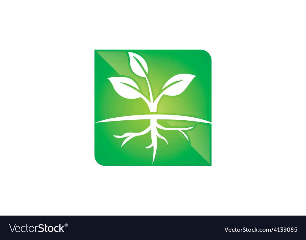 Seed plant ecology root life logo vector | Price: 1 Credit (USD $1)