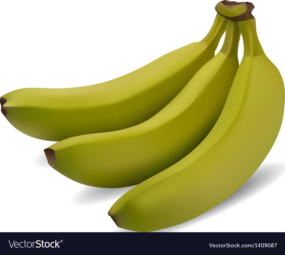 Green banana bundle vector | Price: 3 Credit (USD $3)