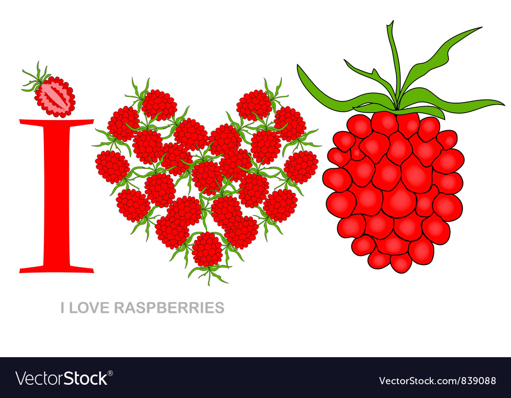 I love raspberries vector | Price: 1 Credit (USD $1)
