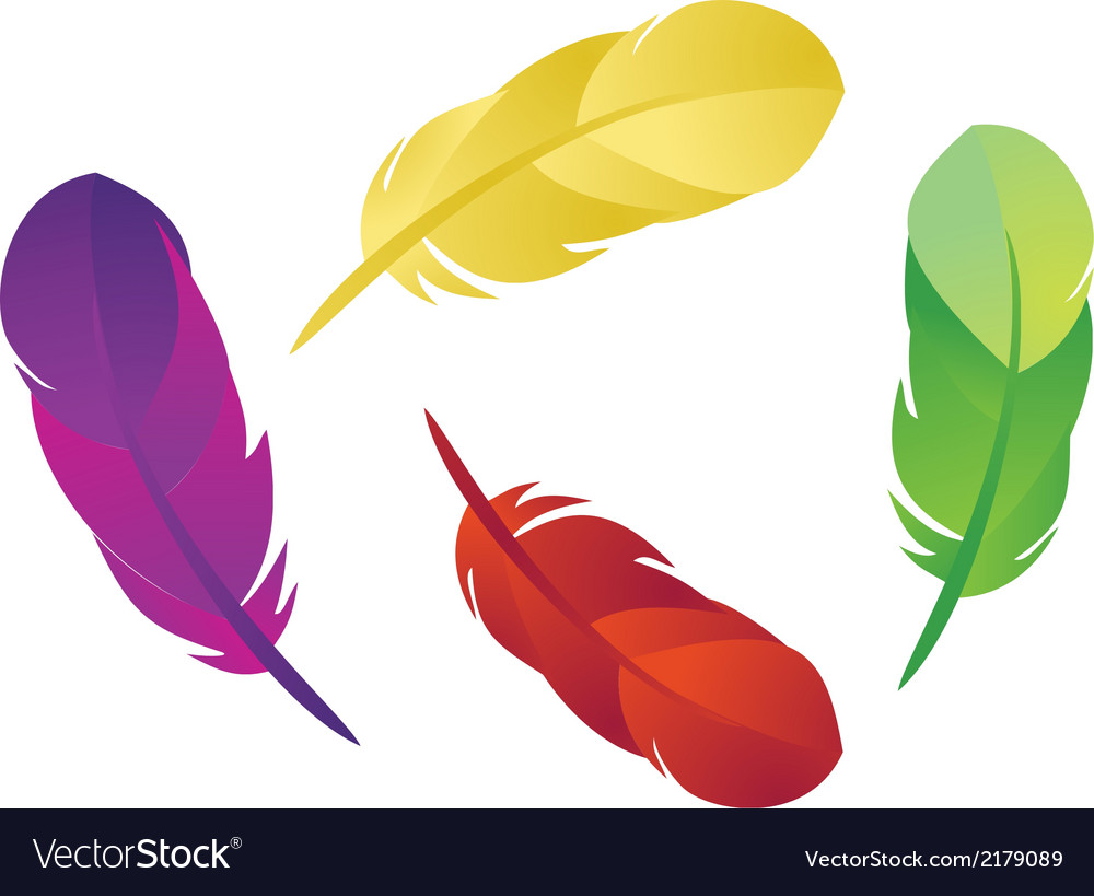 Feathers 1 vector | Price: 1 Credit (USD $1)