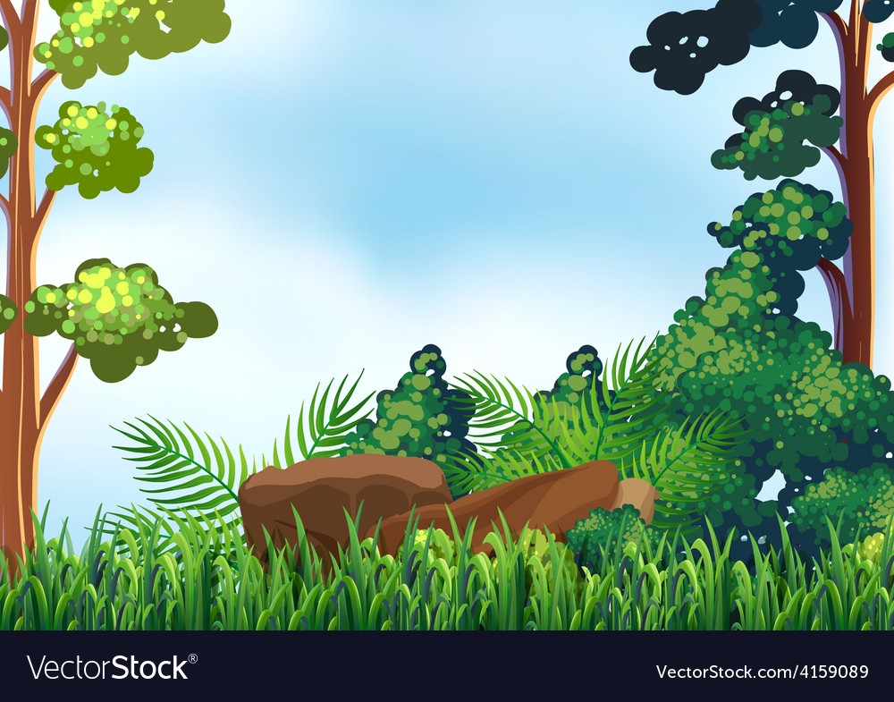 Forest vector   Price: 1 Credit (USD $1)