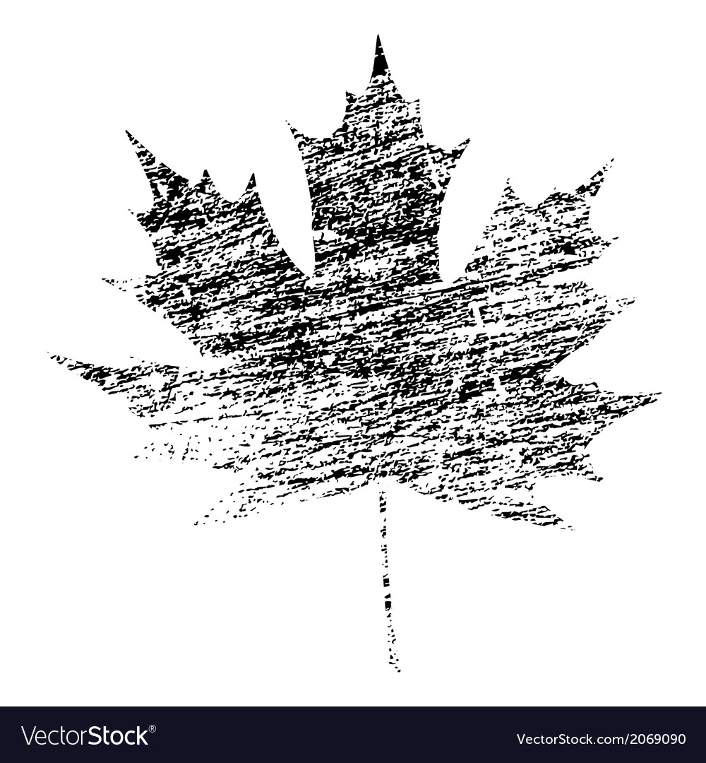 Black grunge maple leaf vector | Price: 1 Credit (USD $1)