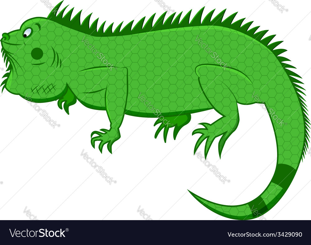 Iguana vector | Price: 1 Credit (USD $1)