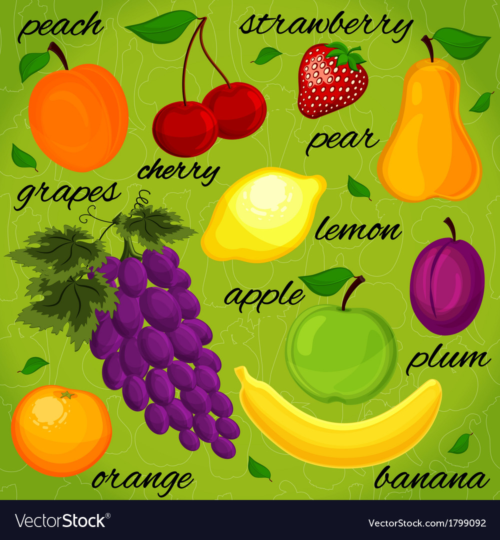 Set it is realistic the drawn fruit vector | Price: 1 Credit (USD $1)