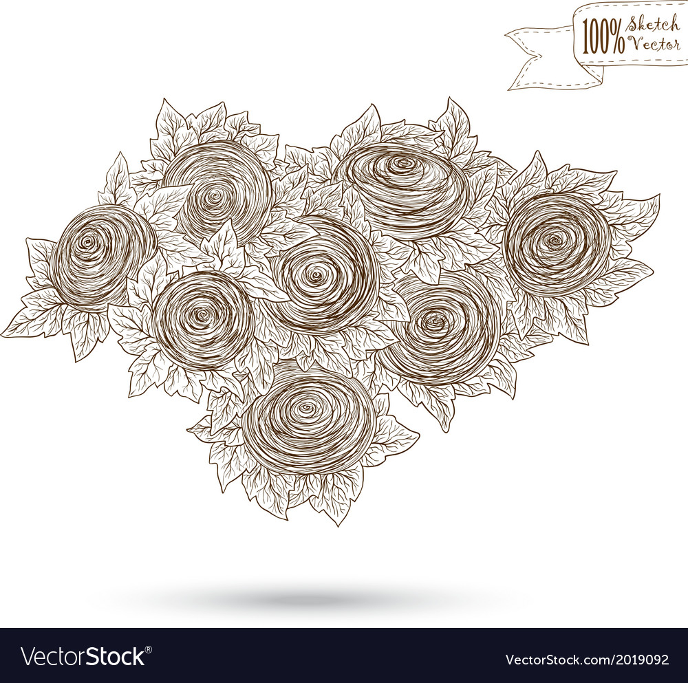 Sketch of roses vector | Price: 1 Credit (USD $1)