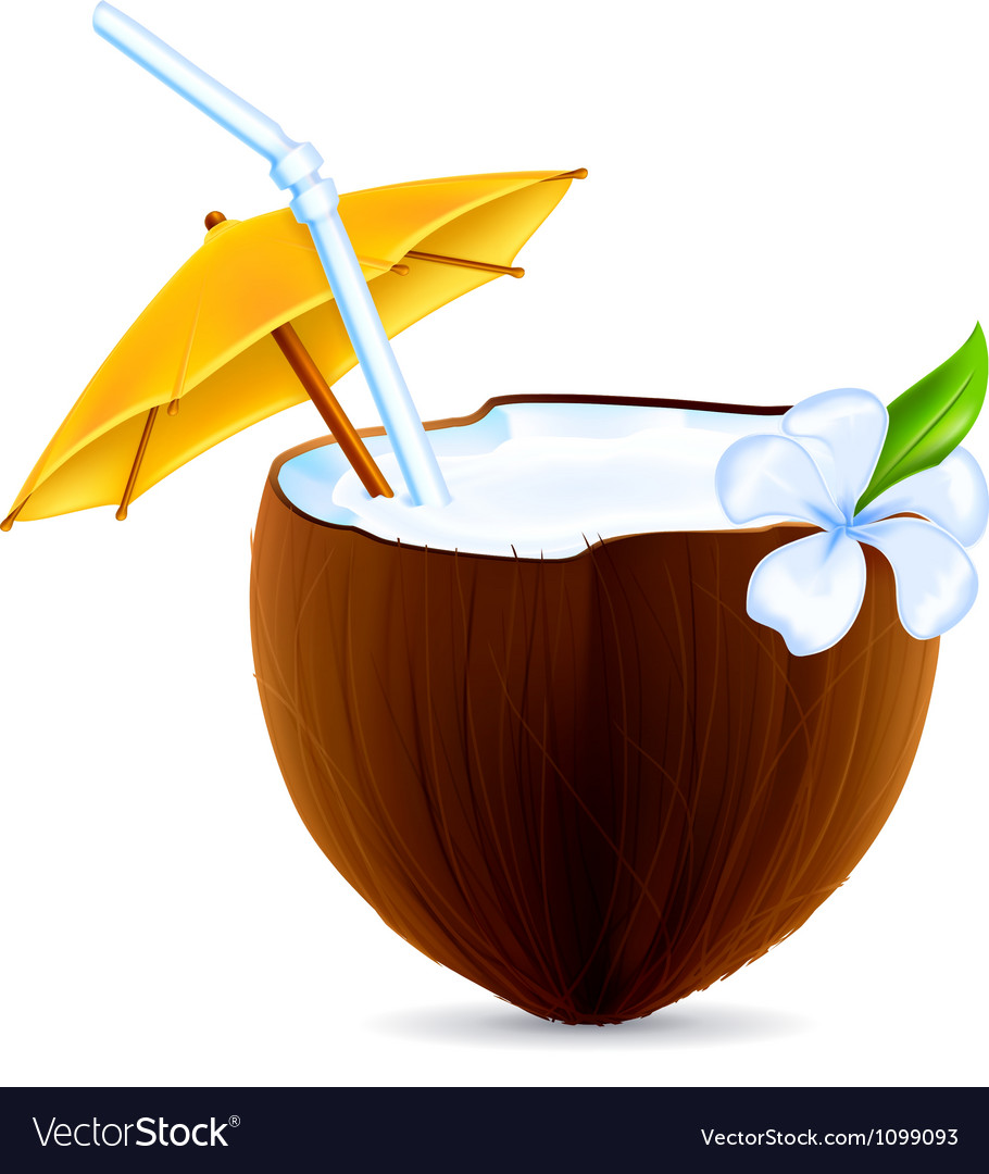 Coconut cocktail vector | Price: 1 Credit (USD $1)
