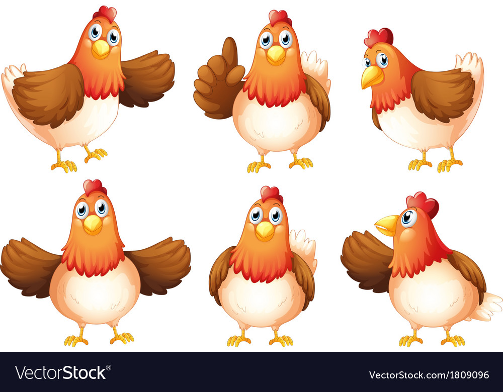 Six fat chickens vector | Price: 1 Credit (USD $1)