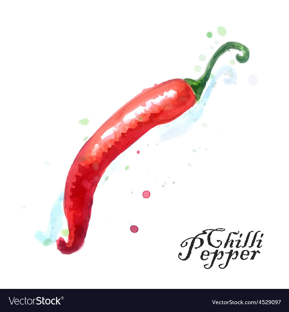 Burning chili pepper on a white background vector | Price: 1 Credit (USD $1)
