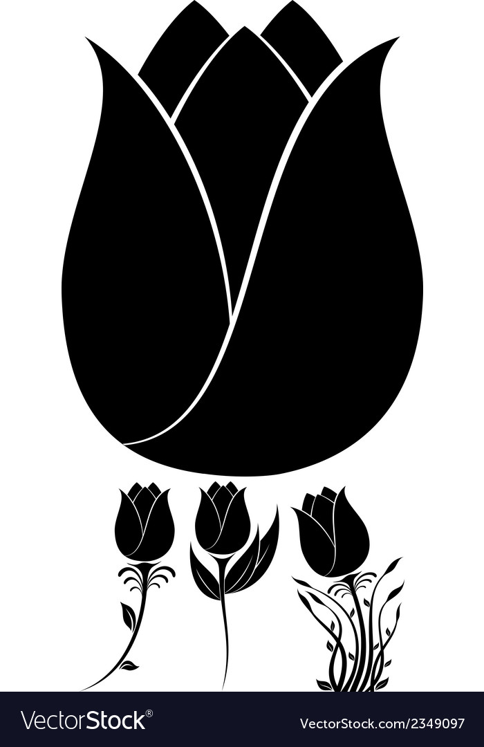 Flowers set 10 vector | Price: 1 Credit (USD $1)