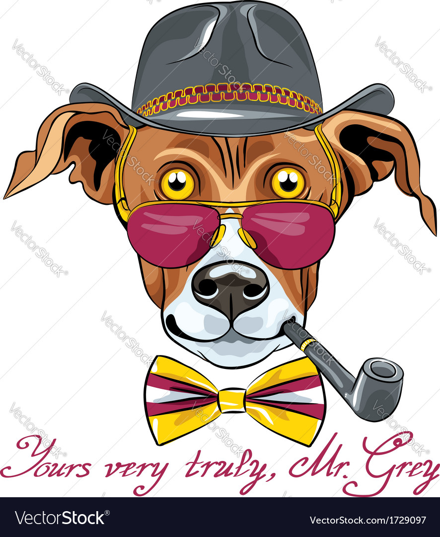 Hipster greyhound dog vector | Price: 3 Credit (USD $3)
