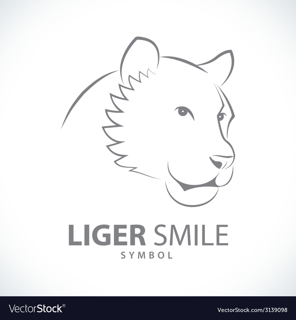 Liger smile design symbol icon vector | Price: 1 Credit (USD $1)
