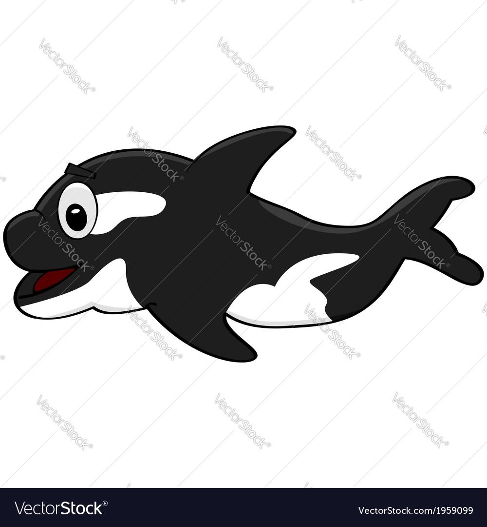 Killer whale vector | Price: 1 Credit (USD $1)