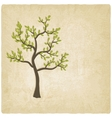 Tree old background vector