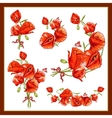 Set of a beautiful bouquet red poppy vector