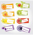 Fruit labels vector