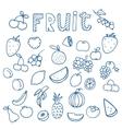 Set of fruit doodle drawings vector