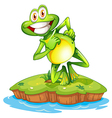 An island with a smiling frog vector