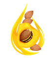 Apricot kernel oil stylized drop vector