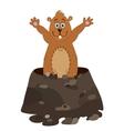 Funny groundhog cartoon vector