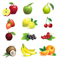 Set of different fruits with leaves and flowers vector