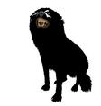 Aggressive dog vector
