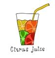 Doodle citrus juice vector